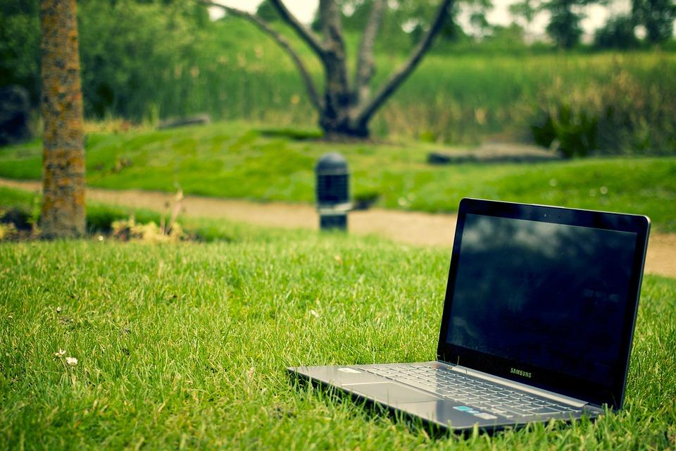Laptop in Wiese