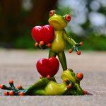 Verliebte Frösche
